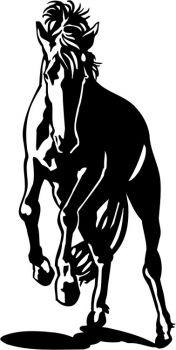 Pferde Aufkleber